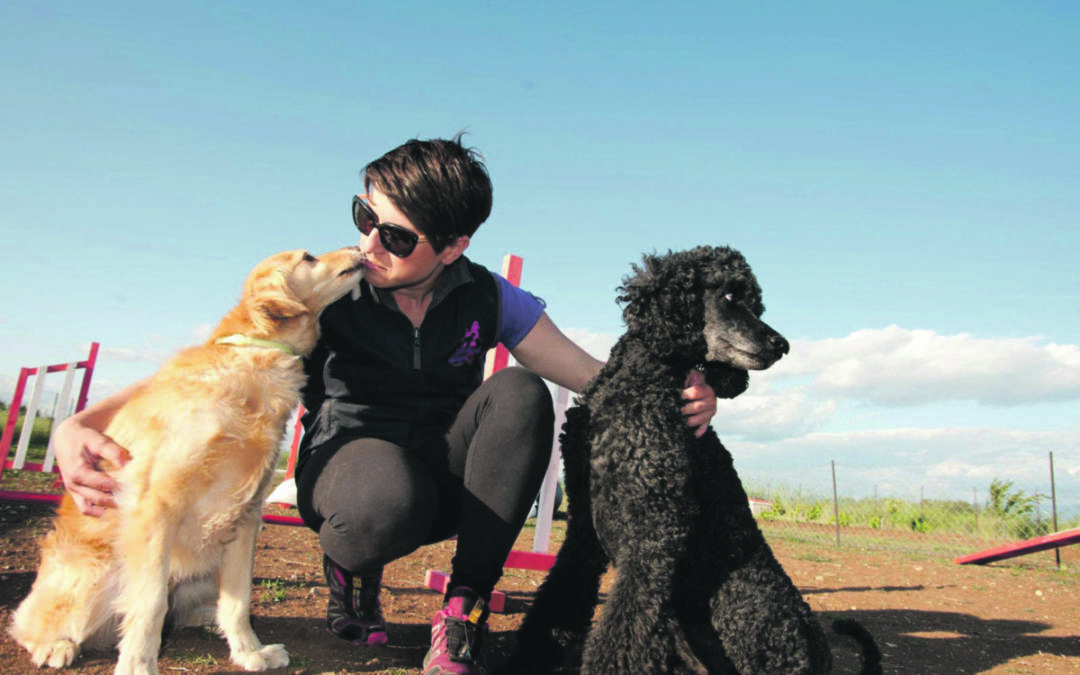 Η απόκτηση ενός σκύλου, αρμονική συμβίωση ή εφιάλτης;