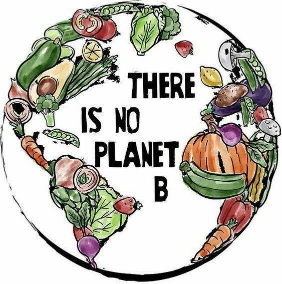 Το οικολογικό αποτύπωμα της χορτοφαγίας